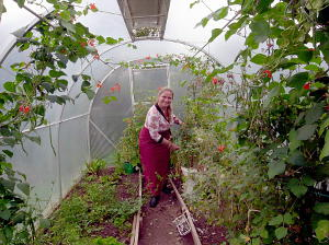 Annett in the greenhouse