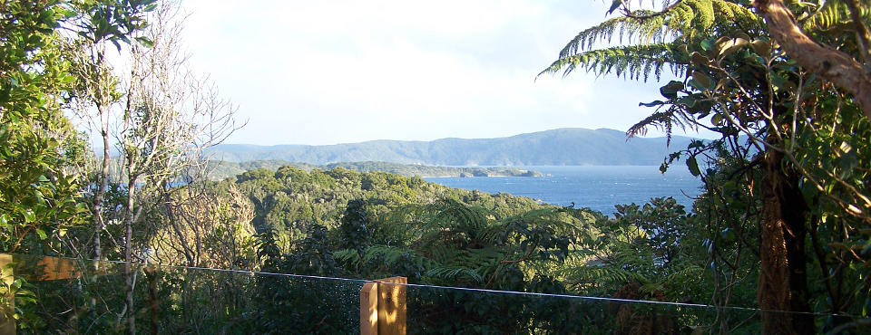 view to Ulva Island  from the Lodge bedroom deck